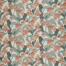 Orange Canna Floral Drapery and Upholstery Fabric by Vervain