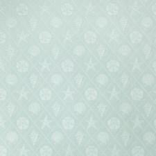 Spray Novelty Drapery and Upholstery Fabric by Fabricut