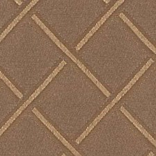 Desert Tan Drapery and Upholstery Fabric by Robert Allen