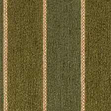 Grass Drapery and Upholstery Fabric by Robert Allen