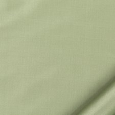 Misty Green Drapery and Upholstery Fabric by Robert Allen/Duralee