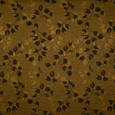Onyx Asian Drapery and Upholstery Fabric by Trend