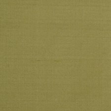 Jungle Solid Drapery and Upholstery Fabric by Trend