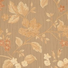 Chipmunk Drapery and Upholstery Fabric by RM Coco