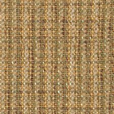 Thyme Drapery and Upholstery Fabric by Robert Allen