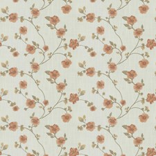 Sunrise Embroidery Drapery and Upholstery Fabric by Fabricut