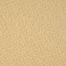 Butter Drapery and Upholstery Fabric by Robert Allen