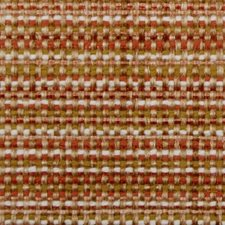 Mango Drapery and Upholstery Fabric by Duralee