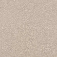 Sand Animal Skins Drapery and Upholstery Fabric by Duralee