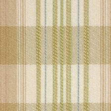 Peche Drapery and Upholstery Fabric by Robert Allen