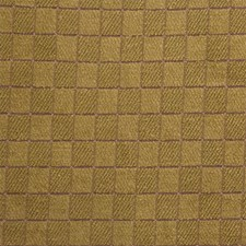 Check Drapery and Upholstery Fabric by Kravet