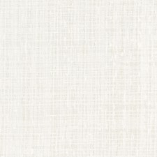 White Drapery and Upholstery Fabric by Robert Allen /Duralee