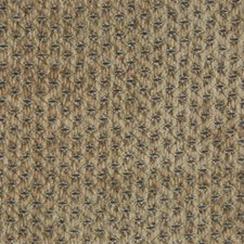 Small Scales Drapery and Upholstery Fabric by Kravet