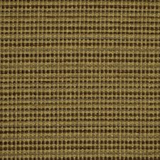 Earth Drapery and Upholstery Fabric by Robert Allen /Duralee