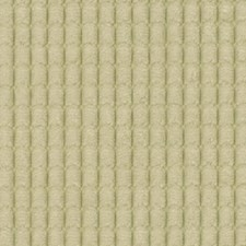 Bone Drapery and Upholstery Fabric by Robert Allen