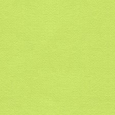Tini Green Solids Drapery and Upholstery Fabric by Lee Jofa