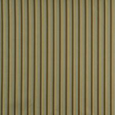Juniper Drapery and Upholstery Fabric by Robert Allen