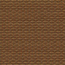 Pecan Drapery and Upholstery Fabric by Robert Allen