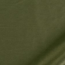 Pine Drapery and Upholstery Fabric by Robert Allen /Duralee