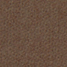 Walnut Drapery and Upholstery Fabric by Robert Allen
