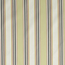 Sunray Drapery and Upholstery Fabric by Robert Allen /Duralee