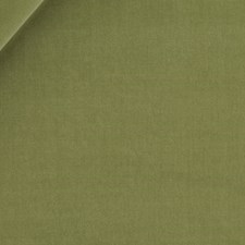 Peapod Drapery and Upholstery Fabric by Beacon Hill