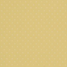 Sunshine Solid Drapery and Upholstery Fabric by Fabricut