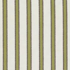 268077 15634 343 Cactus by Robert Allen