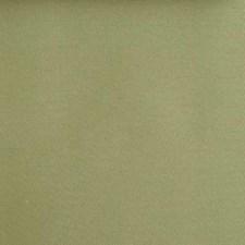 268637 15506 533 Celery by Robert Allen