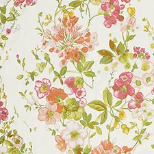 Blossom Drapery and Upholstery Fabric by Scalamandre