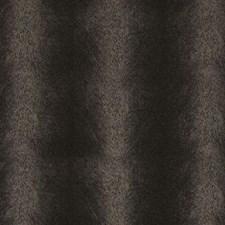 273220 DF15779 104 Dark Brown by Robert Allen