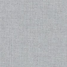 276785 DN15884 248 Silver by Robert Allen