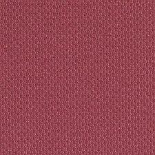 277871 DN15993 299 Fuchsia by Robert Allen