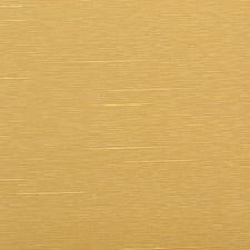 283417 32516 66 Yellow by Robert Allen