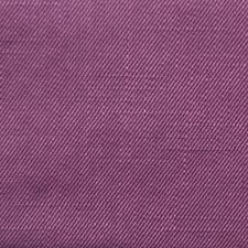 285173 32344 191 Violet by Robert Allen
