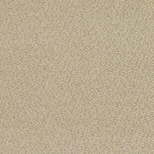 285711 DU15914 152 Wheat by Robert Allen