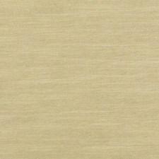 286327 32759 564 Bamboo by Robert Allen