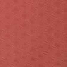 286353 32832 31 Coral by Robert Allen