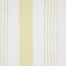 Camel Stripes Drapery and Upholstery Fabric by Kravet