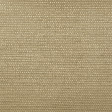 Peanutbritt Drapery and Upholstery Fabric by Robert Allen /Duralee