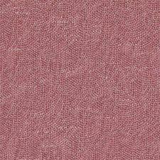 289847 32811 298 Raspberry by Robert Allen