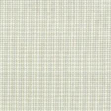 290031 32738 533 Celery by Robert Allen