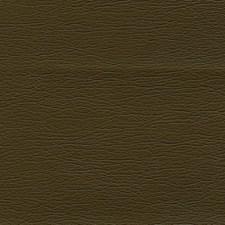 Walnut Drapery and Upholstery Fabric by Schumacher
