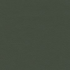 Loden Drapery and Upholstery Fabric by Schumacher