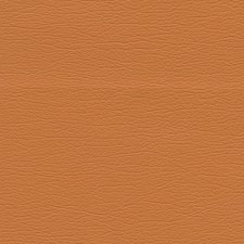 Apricot Drapery and Upholstery Fabric by Schumacher