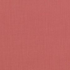 291959 36262 4 Pink by Robert Allen