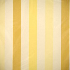Yellow/Cream Drapery and Upholstery Fabric by Scalamandre