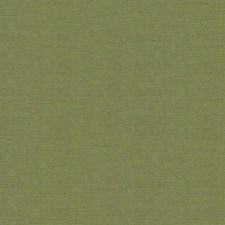 Leaf Solids Drapery and Upholstery Fabric by Kravet