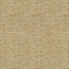 Linen Solid W Drapery and Upholstery Fabric by Kravet