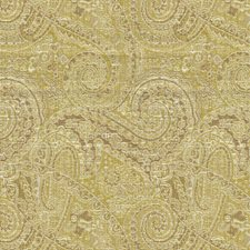 Wasabi Paisley Drapery and Upholstery Fabric by Kravet